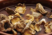 Funghi Ammollati Mushroom Soaking 浸泡香菇在