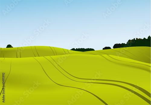 Poster Wit Rural landscape
