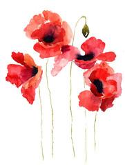 Obraz Stylized Poppy flowers illustration