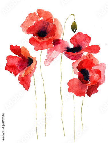 Stylized poppy flowers illustration buy this stock illustration stylized poppy flowers illustration mightylinksfo