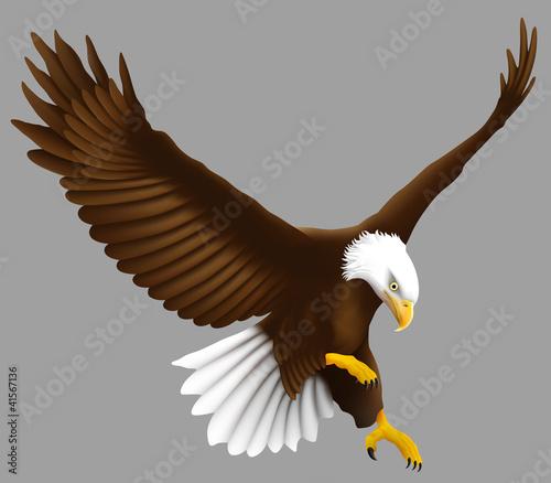 Adler im Anflug Fototapete