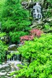 Little beautiful waterfall .Nature Scenery - 41590999