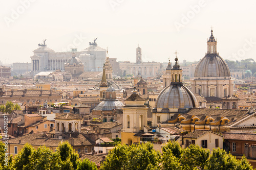 In de dag Rome Rome overview with monument and several domes