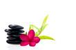 Black balanced zen stones with bamboo and white plumeria flower