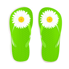 Flip Flops With Camomile