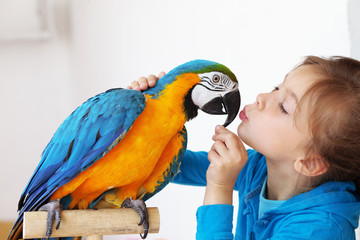 Fototapeta Child with ara parrot