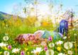canvas print picture Mädchen schläft in einer Blumenwiese / dandelion-7