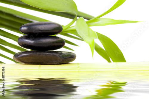 Spoed Foto op Canvas Zen piedras negras con agua y hojas verdes