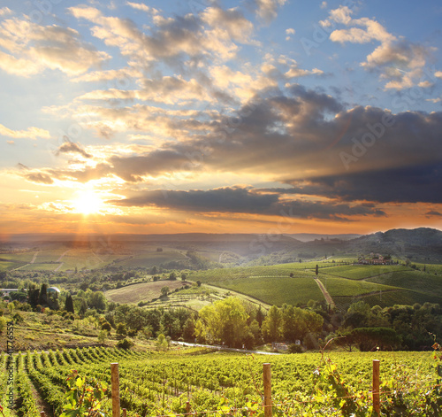Deurstickers Toscane Chianti vineyard landscape in Tuscany, Italy