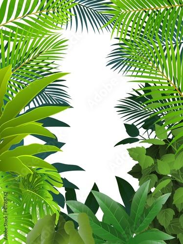 las-tropikalny-tlo