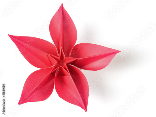 flower exotic origami