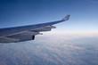 Blick aus Flugzeug 2 - TLerch