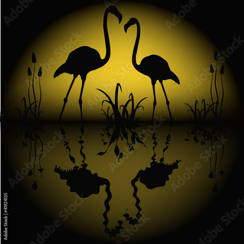 Stickers pour portes Hibou Reflection of two flamingos