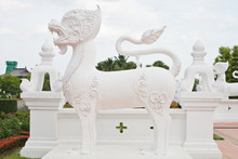 White Leo Of Palace ,Royal Flora, Chiangmai, Thailand