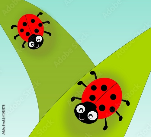 Poster Lieveheersbeestjes Two cute ladybugs on green leafs.
