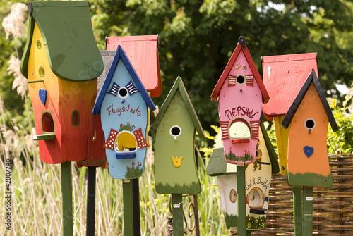 Vogelhäuser Fototapete