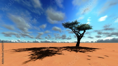 obraz dibond African savannah