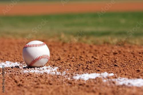 Fotografiet  Baseball on the Field