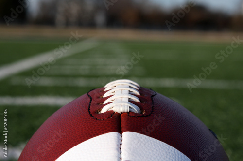 Fotografiet  Football with yard lines beyond