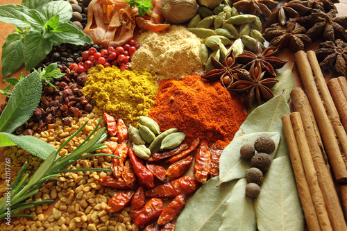 Obraz Spices and herbs - fototapety do salonu