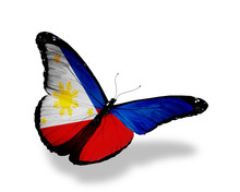 Philippines Flag Butterfly Fly...