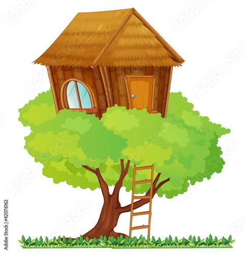 Fotografie, Tablou  tree house