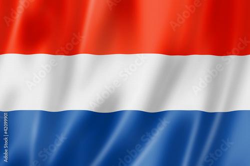 Fotografie, Obraz  Netherlands flag