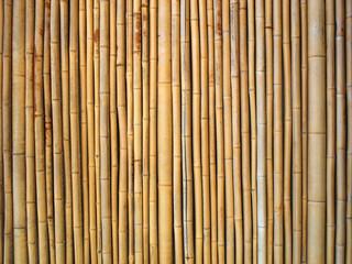 Fototapeta Fond bambou
