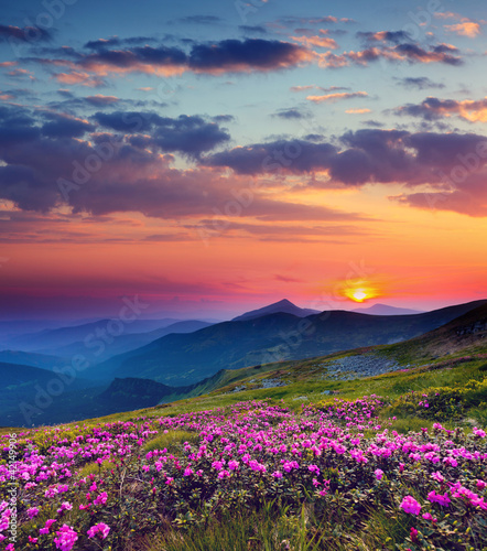 Wall mural - mountain landscape