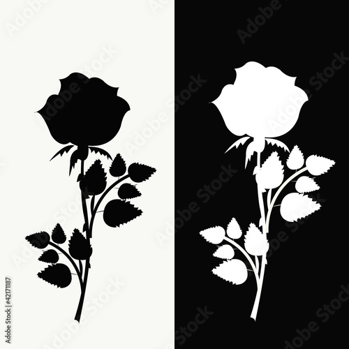 Stickers pour portes Hibou Two roses, black and white