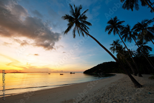 Foto Rollo Basic - Beautiful sunrise at Beach with palms (von dell)