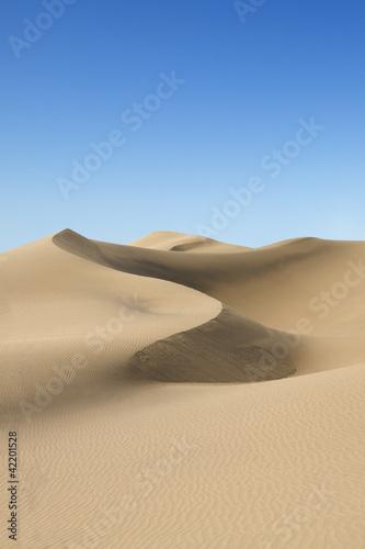 Poster de jardin Desert de sable Gold desert. Sunny day.