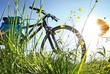 canvas print picture - Trekkingbike Pause im Gegenlicht