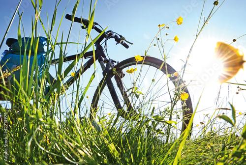 Trekkingbike Pause im Gegenlicht #42213924