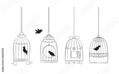 Poster Birds in cages Birds in cages