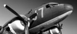 DC3 Vintage - 42232935