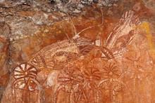 Aboriginal Rock Art Depicting Fishes, Nourlangie