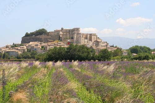 Foto op Plexiglas Lavendel provenza lavanda paese