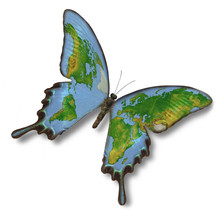 Map Of Earth On Butterfly