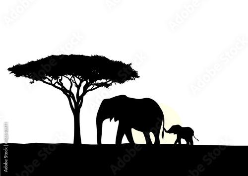 slon-afrykanski-z-sylwetka-dziecka