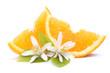 canvas print picture - Orangenspalten