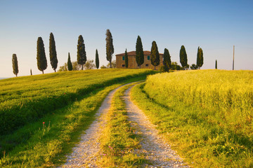 Fototapeta Krajobraz Villa in Toscana con cipressi