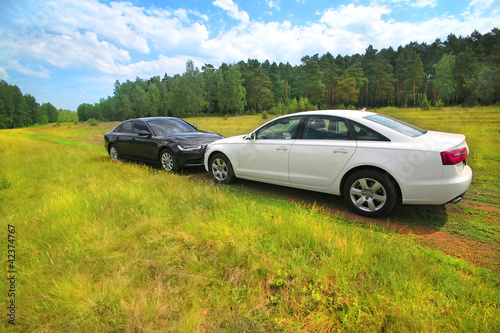 Aluminium Prints Old cars Two prestigious cars on nature