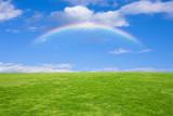Fototapeta Tęcza - 草原と虹