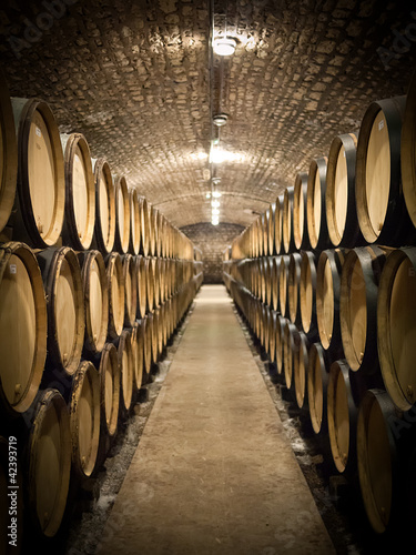 Fotografie, Tablou Barrels in wine cellar