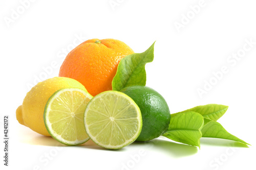Vászonkép Arrangement mit Zitrusfrüchten, citrus fruits