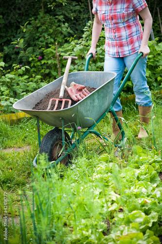 Gardener with a wheelbarrow full of humus Poster Mural XXL
