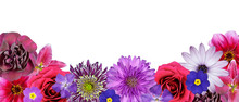 Various Pink, Purple, Red Flowers At Bottom Row Isolated