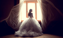 The Beautiful Bride Against A ...