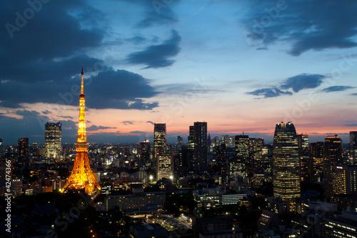 Foto op Plexiglas Tokio 東京タワー